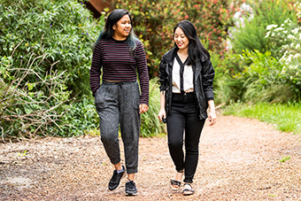 Two students walking along a tree lined path