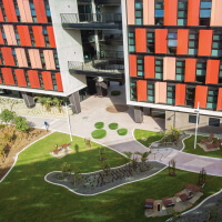 Deakin Burwood campus landscaping and building exterior